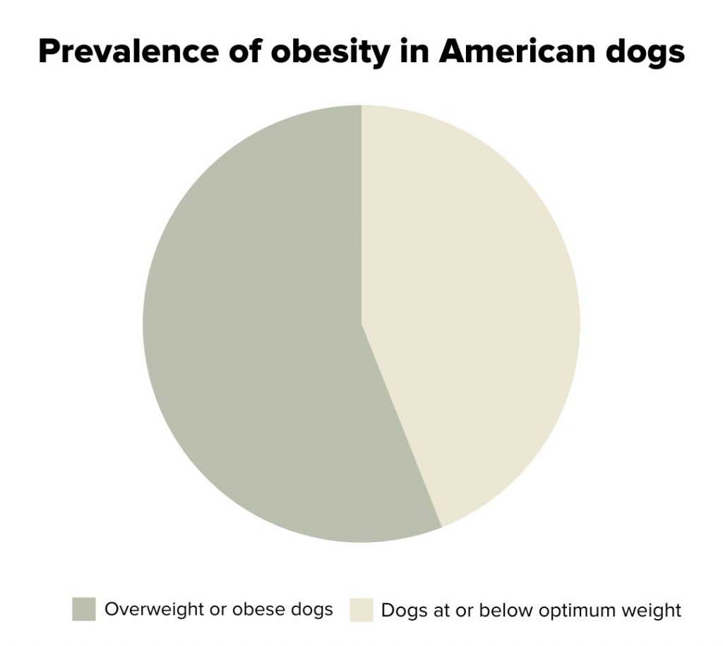 Prevalence of obesity in American dogs