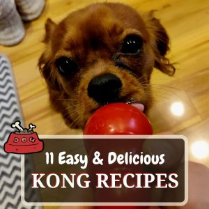 kong recipes