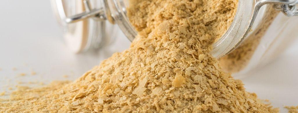 yeast closeup