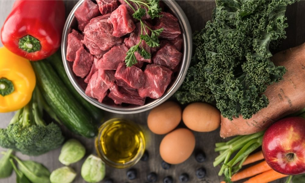 raw dog food ingredients
